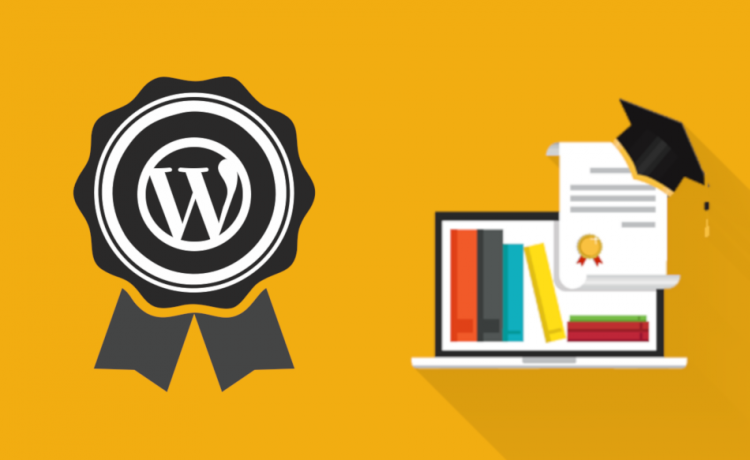 Earn money with a wordpress online course plugin