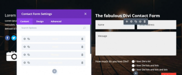 The Divi theme contact form module