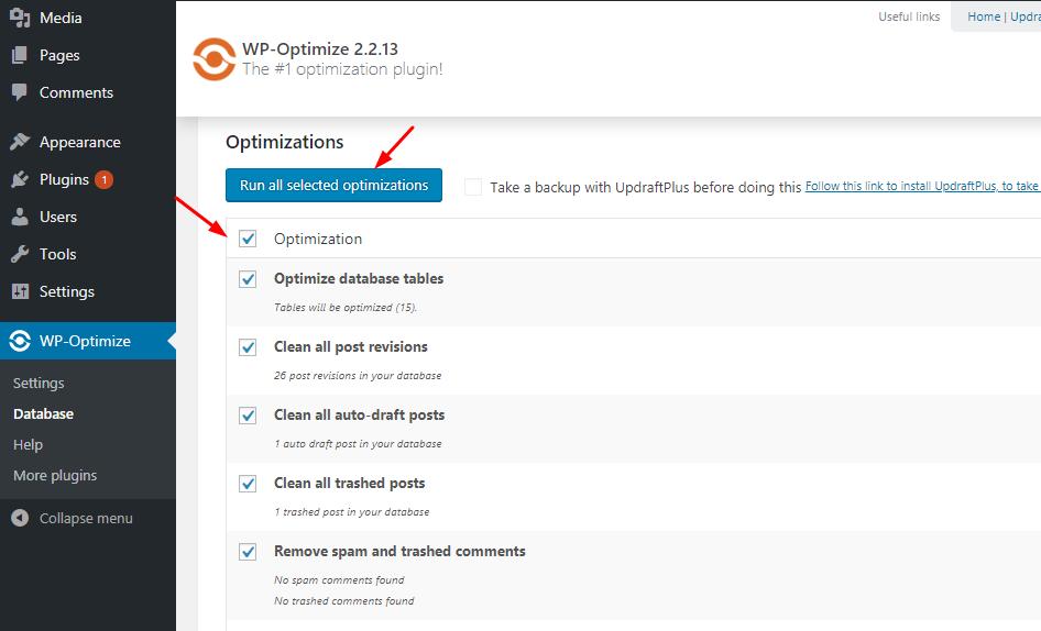 run wp optimize plugin